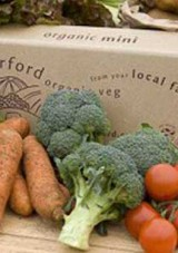 Win a fantastic free organic veg box & cookbook