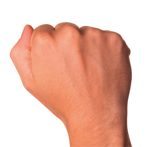 Portion size fist
