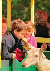 Win a Family Day Out at the World of Country Life!