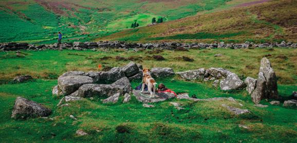 English Heritage Sites in Devon