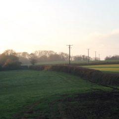 Brampford Speke Circular Walk