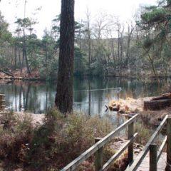 Bystock Pools Circular Walk