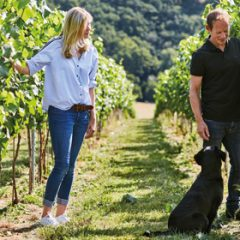 15 Minutes with… Swanaford Vineyard