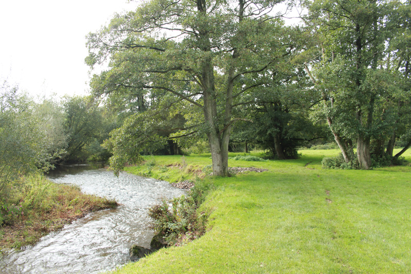 River Coly Circular Walk