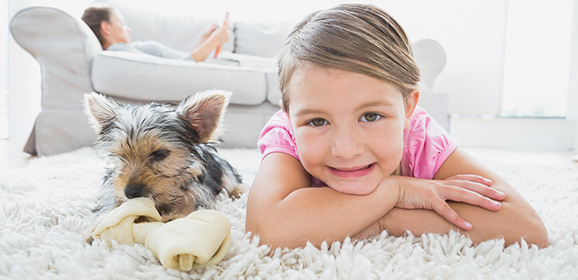 Win Carpet Cleaning in Your Home Worth £180!