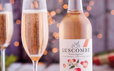 Win a Variety Pack of Organic Luscombe Drinks